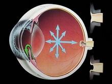 pojacana-aktivnost-ocnih-kapaka