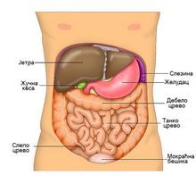 metabolizam hrane